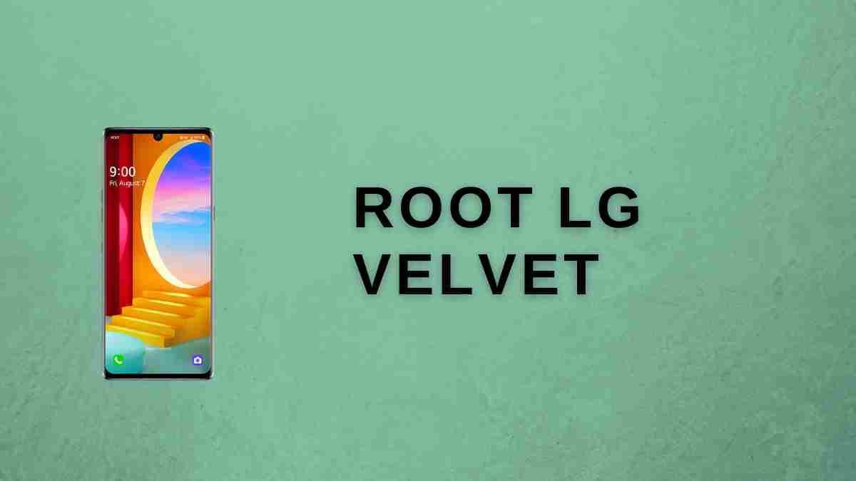 root lg velvet