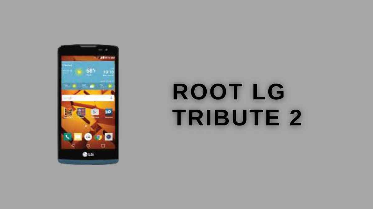 Root Lg tribute 2