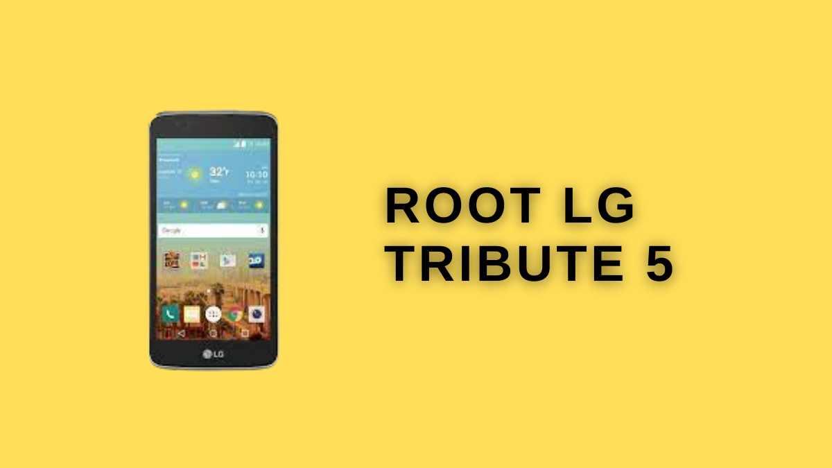 root Lg tribute 5
